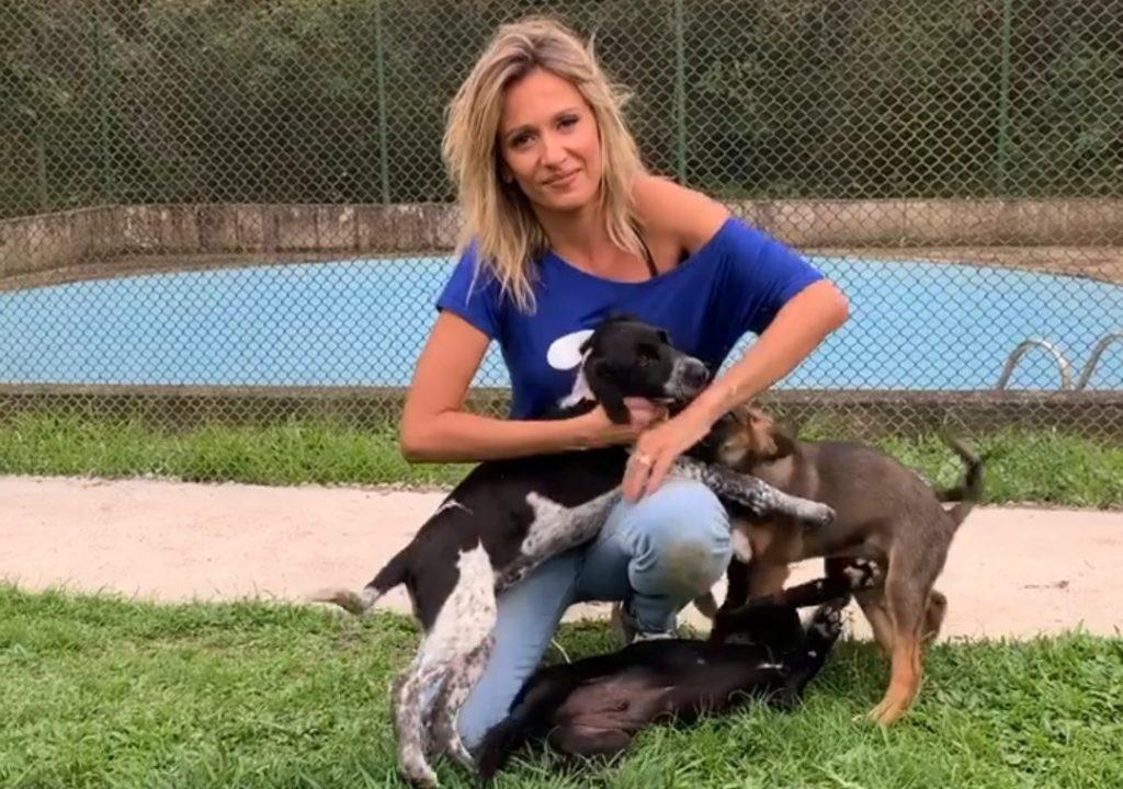 De camiseta azul e calça jeans, Luisa Mell posa com 3 cachorros filhotes